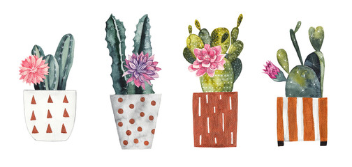 Watercolor cacti in decorative flower pots on white isolated background