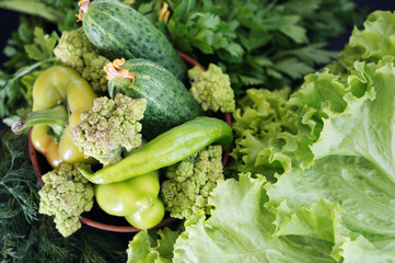 fresh green vegetables and greens and for salad preparation