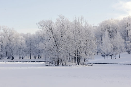 Winter landscape in Russia, light snow covered the frozen trees and the lake on the small island