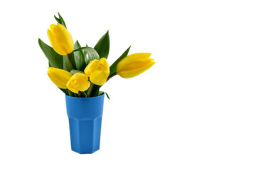 Yellow tulips in blue vase stock images. Yellow tulips on white background. Spring floral decoration. Spring background concept. Yellow tulips bouquet in vase