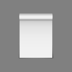Vector icon of paper scroll