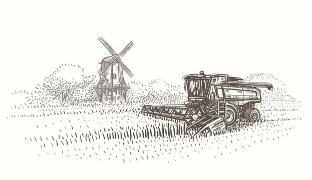 Combine harvester at work in the field near mill sketch illustration. Vector.