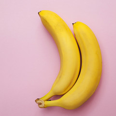 bananas upright on a pink background isolated