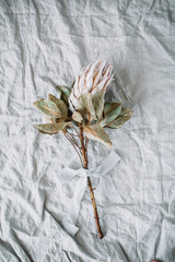 Protea flower on grey linen blanket. Flat lay, top view.