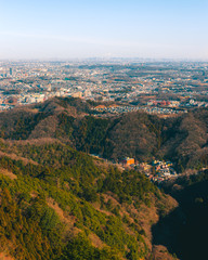 Tokyo Landscape From the Mountains