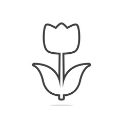 Tulip line icon vector