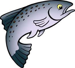 Cartoon Vector illustration of a Salmon or Trout Fish