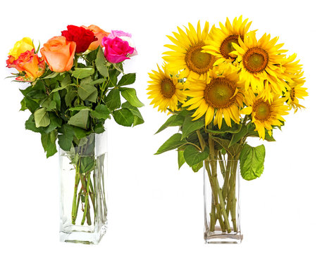 roses in vase and sunflowers in vase isolated on white