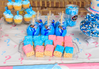 Outdoor Pink and Blue Gender Reveal Party Decoration:  Pink and blue, girl or boy, outdoor gender reveal party decoration and party favorites.