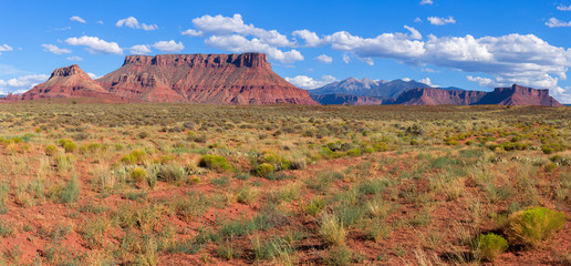 Red Cliffs in Castle Valley Utah, USA