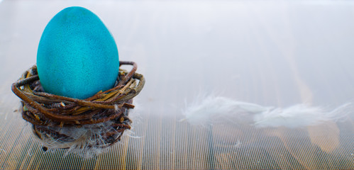 Easter composition with a colored egg in the nest
