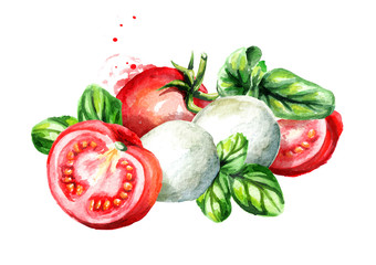 Mozzarella with Basil and tomatoes. Watercolor hand drawn illustration, isolated on white background