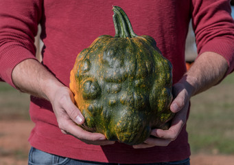 Man Holds Bumpy Green Pumpkin