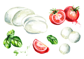 Mozzarella cheese, Basil, tomatoes set. Watercolor hand drawn illustration, isolated on white background