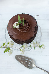 chocolate cake with white flowers on clean white background