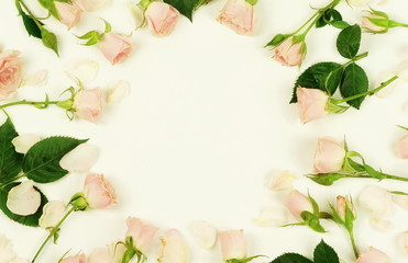 Frame of beautiful pale pink roses on a white background.Holiday concept. Copy space. Top view