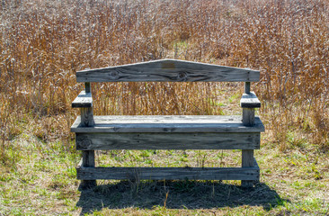 empty weathered wooden bench amid golden prairie grass in the Texas Hill Country
