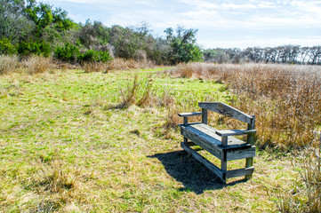 empty weathered wooden bench amid golden prairie grass and green trees in the Texas Hill Country