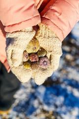 Girl holding frozen sea shells