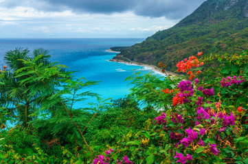 adorable natural wild landscape with rocky mountains overgrown dense green jungle tree, palm and clear azure water of sea ocean