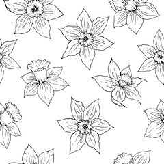 Daffodil flower vector seamless pattern. Black floral contours on white background