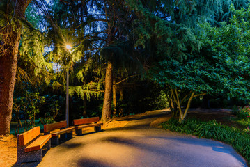 wooden benches in an empty night park, lit by the light of a street lamp