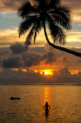 Silhouette of leaning palm tree and a woman at sunrise on Taveuni Island, Fiji
