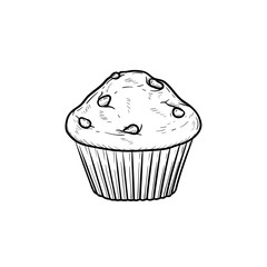 Muffin hand drawn outline doodle icon. Vector sketch illustration of muffin for print, web, mobile and infographics isolated on white background.