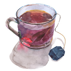 Watercolor drawing of a transparent cup with tea bag and brewed tea