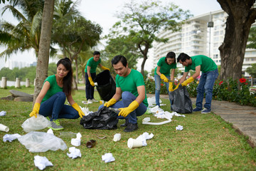 Cleaning park