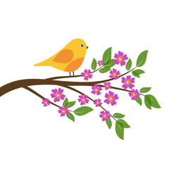 Orange bird on branch of spring tree with flowers and leaves.