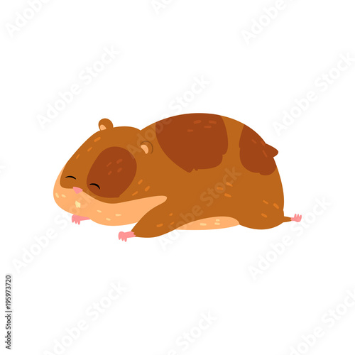 cute cartoon hamster character sleeping funny brown rodent animal