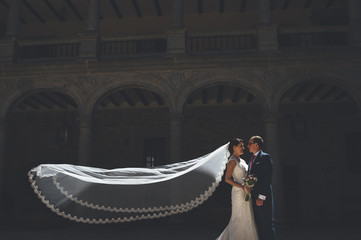 Portrait of just married couple with bride veil flying