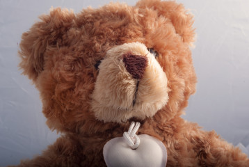 The teddy bear, the best friend of children