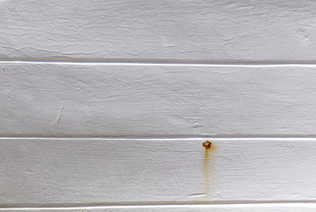 White wood wall texture as background