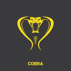 vector dangerous cobra snake head with hood logo design template. danger king cobra icon. viper orange silhouette isolated