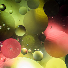 Background of bright colored circles, a close-up shot