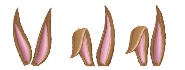 Brown fluffy rabbit ear collection, for Easter and animal design. Vector illustration isolated on white