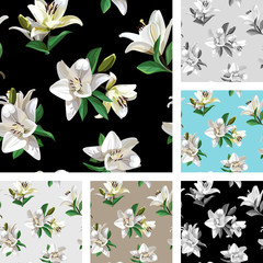 White Flowers of Lily (Madonna Lily). Set of Seamless Floral Patterns on light and black background.