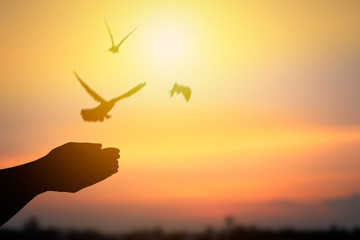 Silhouette of hand releasing birds and flying to freedom life, concept as hope and free. Fototapete