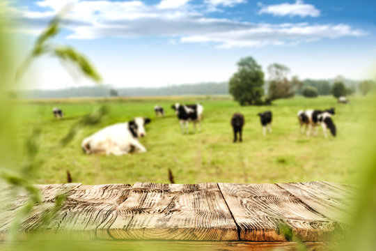 fresh milk and spring landscape