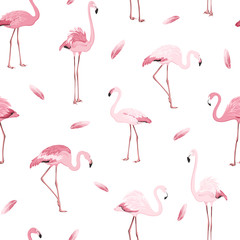 Poster Flamingo Exotic pink flamingos colony flamboyance flock feather seamless pattern on clean white background. Wading bird species realistic detailed vector design illustration. Vector design illustration.