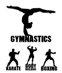 Sport background. Gymnastics, karate, bodybuilding, boxing.