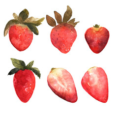 Set of isolated hand drawn red strawberry.  Berries and strawber