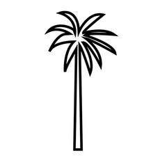 palmetto tree outline on white background