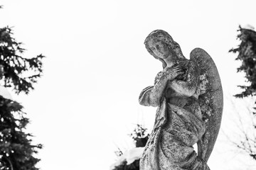 Ancient figure of a stone angel in an old cemetery