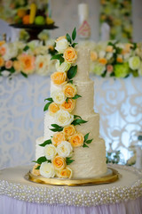 Elegant cake for wedding celebration