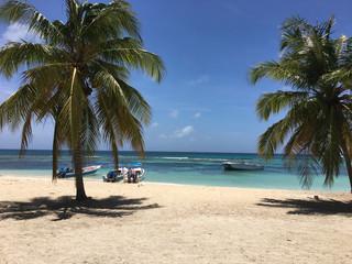 Sandstrand mit Palmen und Booten von der Insel Saona in der Dominikanischen Republik
