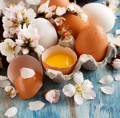 Chicken eggs and almond flowers