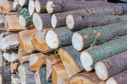 Verschiedene Holzarten verschiedene holzarten zu brennholz verarbeitet stockfotos und